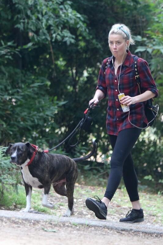 dogwalker chick Amber Heard in black lycra pants