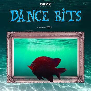 Dance Bits Summer 2021 (2021) Full Albüm İndir